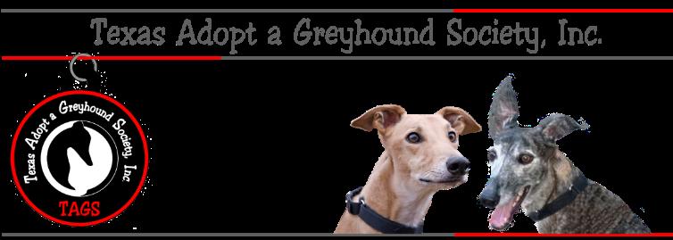 Greyhound Information